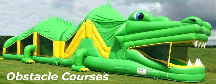 Galway Bouncy Castles Crocodile